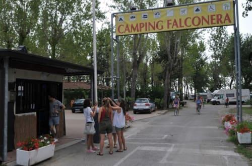 campeggio-falconera-3