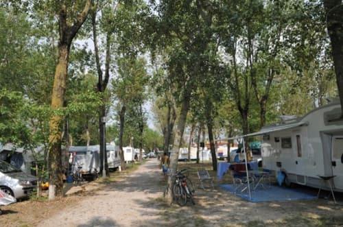 campeggio-falconera-4
